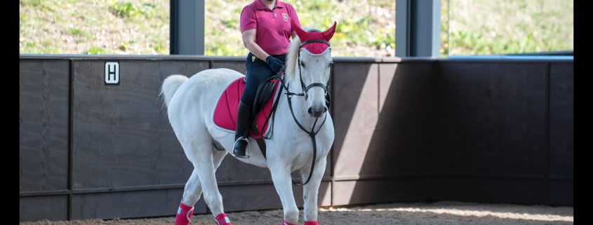 Introduction to Dressage