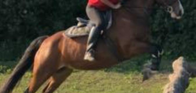 Leah jumping with Larosa